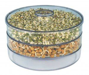Kuber Industries™ Beans/Grains Sprout Maker – Set Of 1 Pc (3 Compartments) Code-Spr003